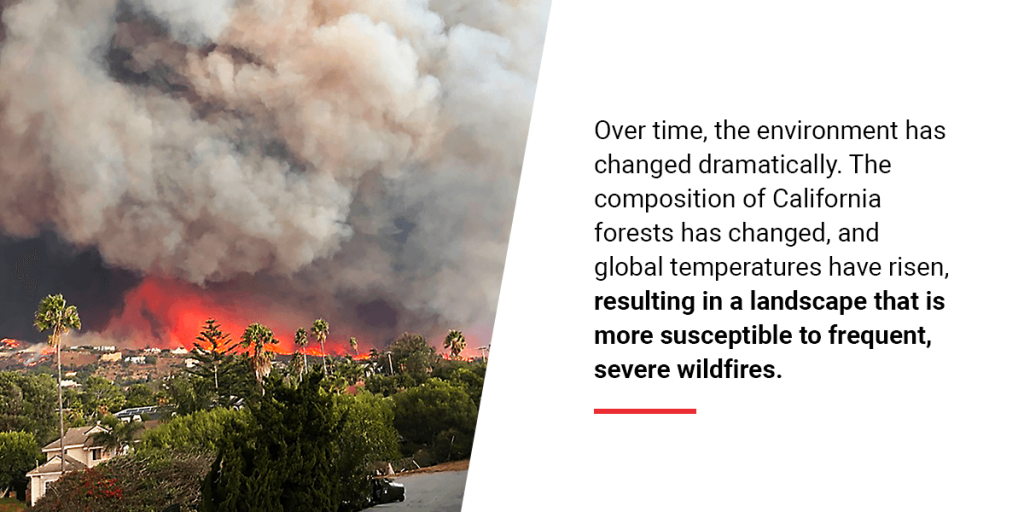 What Are Wildfires?